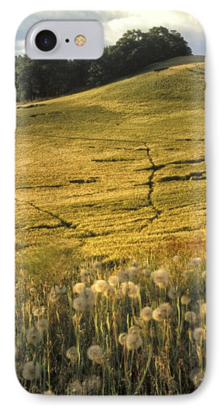 Field And Weeds IPhone Case by Latah Trail Foundation