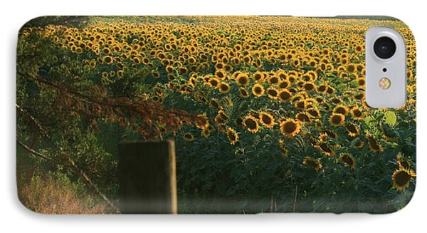Field Dreams No.2 IPhone Case by Neal Eslinger