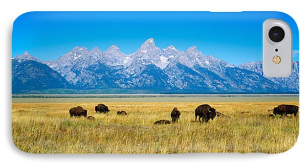 Field Of Bison With Mountains IPhone Case by Panoramic Images