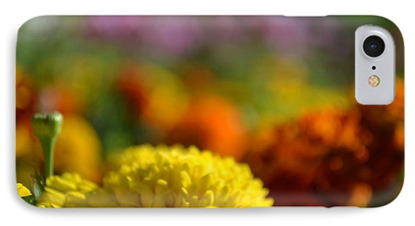 IPhone Case featuring the photograph Field Of Carnations by Scott Lyons