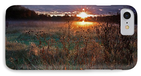 Field Of Dreams IPhone Case by Suzanne Stout