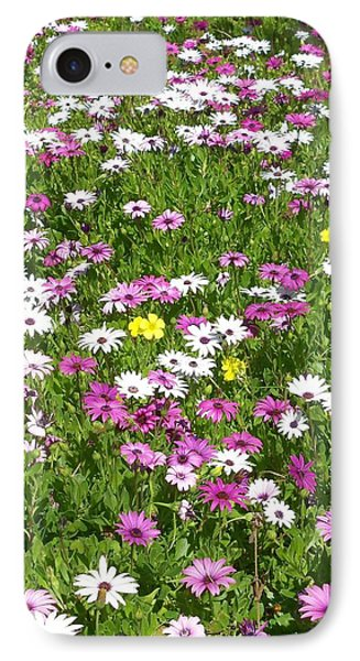 Field Of Flowers Phone Case by Deborah Montana