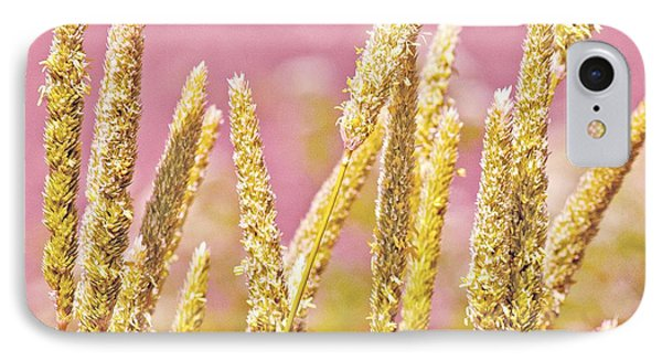 Field Of Grass And Wildflowers IIi IPhone Case by Artist and Photographer Laura Wrede