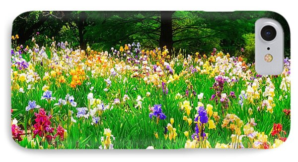 Field Of Iris IPhone Case by Peggy Franz