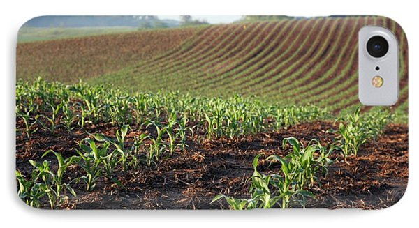 Field Of Maize IPhone Case by Jim West