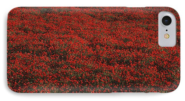 Field Of Red Poppies Phone Case by Ian Cumming