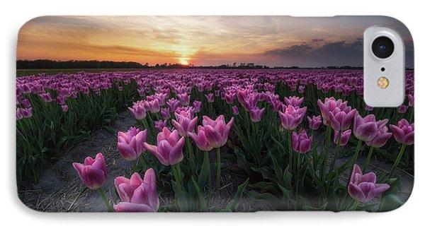Tulip iPhone 7 Case - Field Of Tulips by Amada Terradillos S.