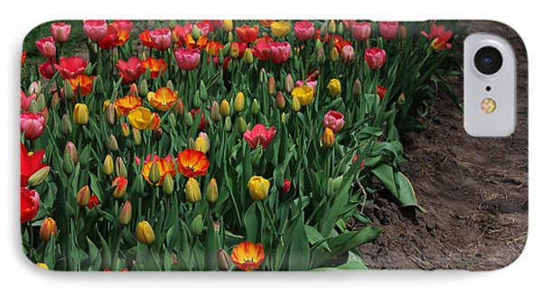 IPhone Case featuring the photograph Field Of Tulips by Bill Woodstock