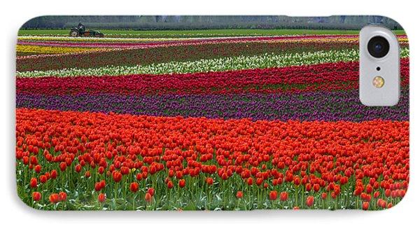Field Of Tulips IPhone Case by Jordan Blackstone