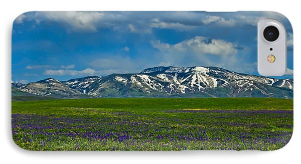 Field Of Wildflowers IPhone Case by Don Schwartz