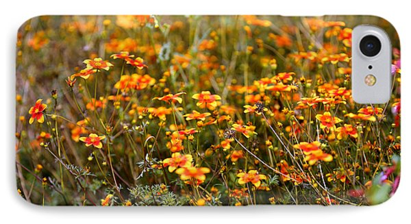 Field Of Wildflowers IPhone Case