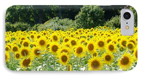 Field Of Yellow IPhone Case