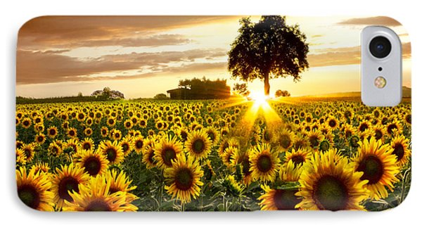 Fields Of Gold IPhone Case by Debra and Dave Vanderlaan