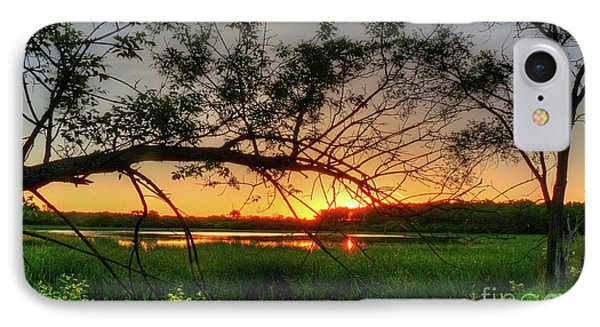 Fiery Swamp Sunset IPhone Case
