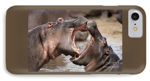 Fighting Hippos IPhone Case by Richard Garvey-Williams