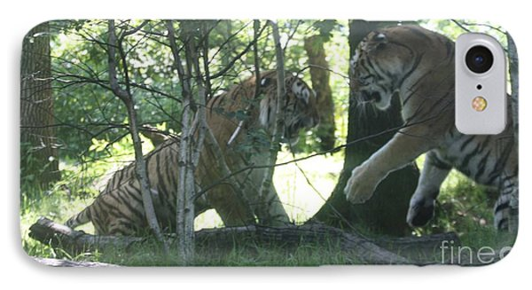 Fighting Siberian Tigers IPhone Case by John Telfer