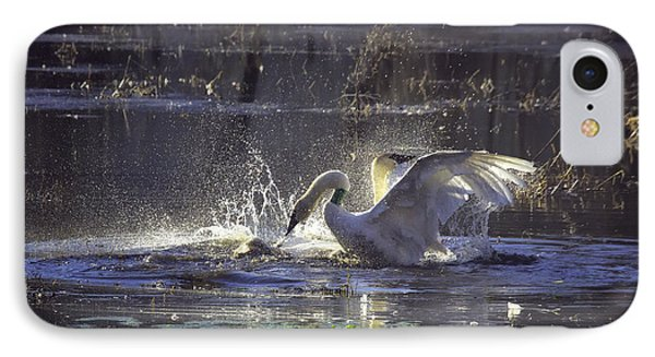 Fighting Swans Boxley Mill Pond IPhone Case