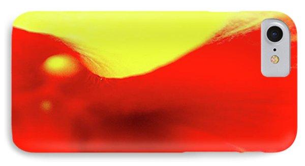 Figure - Hibiscus IPhone Case by Ben and Raisa Gertsberg