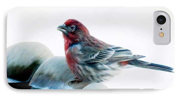 IPhone Case featuring the digital art Finch by Ann Lauwers