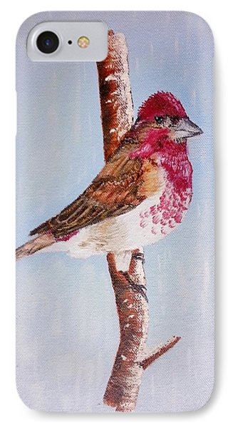 Finch IPhone Case by Valorie Cross
