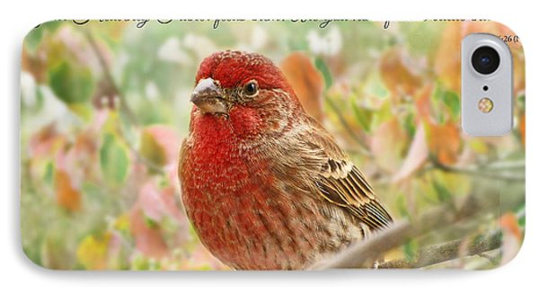 Finch With Verse New Version IPhone Case by Debbie Portwood