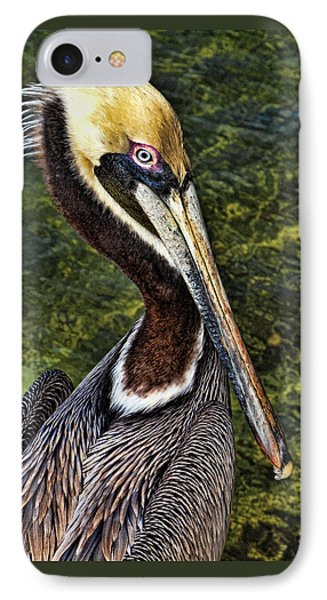 IPhone Case featuring the photograph Pelican Close Up by Paula Porterfield-Izzo