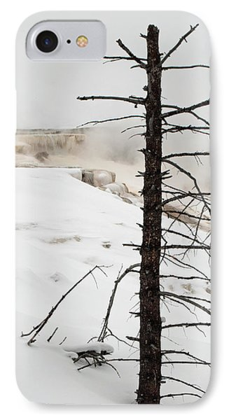 Fine Place For A Dead Tree IPhone Case by Bruce Gourley