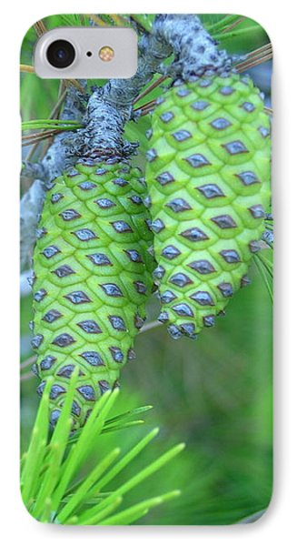 Fir Cones IPhone Case