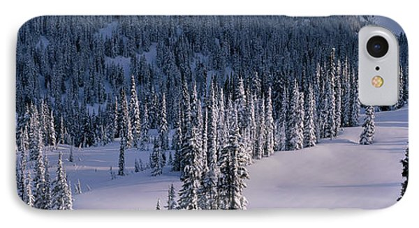 Fir Trees, Mount Rainier National Park IPhone Case by Panoramic Images