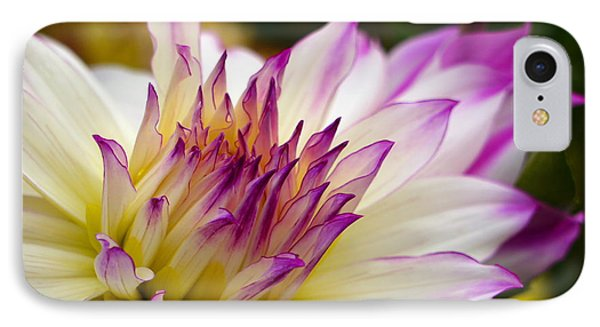 IPhone Case featuring the photograph Fire And Ice - Dahlia by Jordan Blackstone