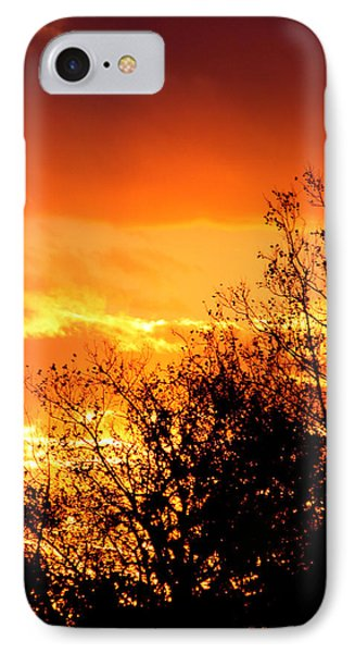 Fire Breather Phone Case by Russell  King