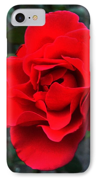 Fire IPhone Case by Lucy D