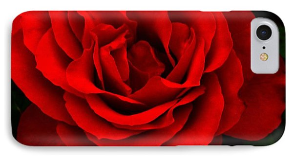 IPhone Case featuring the photograph Fire Red Rose by Margaret Newcomb