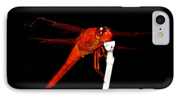 IPhone Case featuring the photograph Fire Red Dragon by Peggy Franz