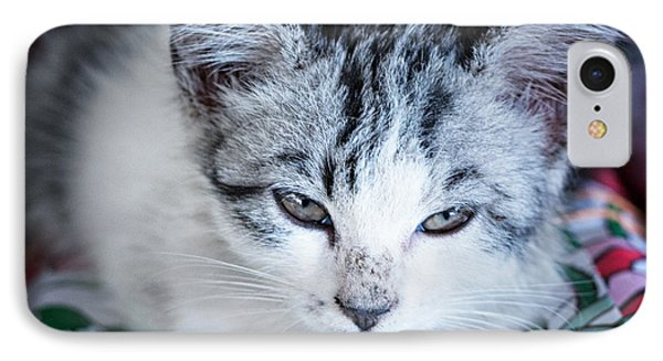 IPhone Case featuring the photograph Firecracker Kitten by Zoe Ferrie