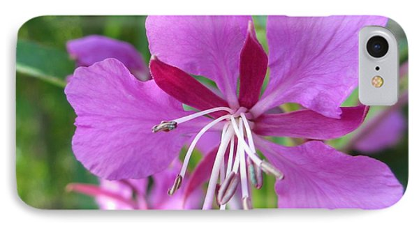 Fireweed 1 IPhone Case