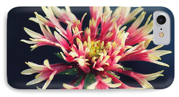 Firework Blooms Phone Case by Melanie Lankford Photography