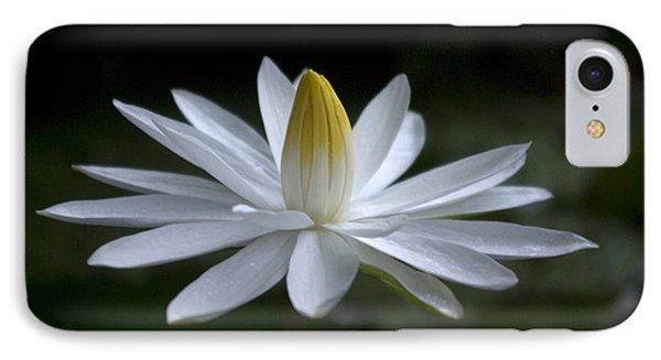 Far North Queensland iPhone 7 Case - First Light's Breath by Kerryn Madsen-Pietsch