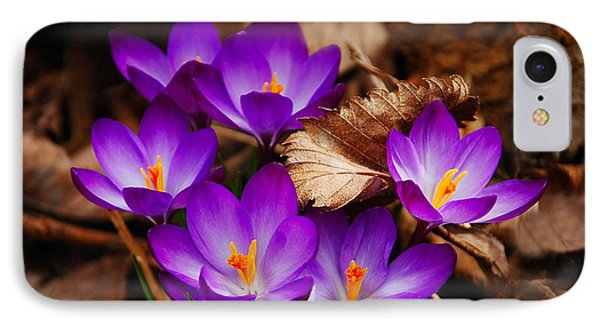 First Signs Of Spring Phone Case by Elaine Manley