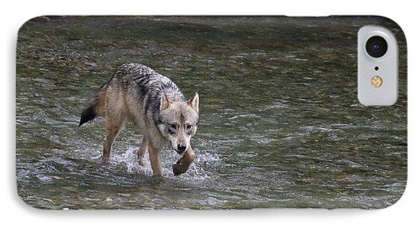 Fish Creek Wolf IPhone Case