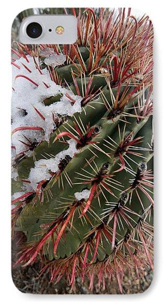 Fish Hook Barrel Cactus With Snow Phone Case by Susan  Degginger