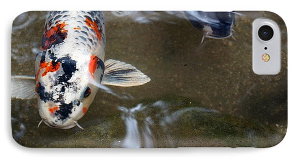 IPhone Case featuring the photograph Fish Scales by Cassandra Buckley