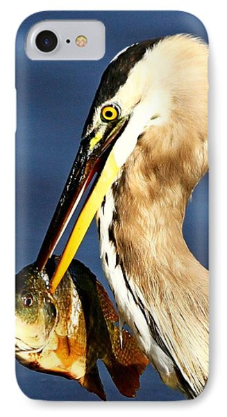 Fishing In Florida IPhone Case