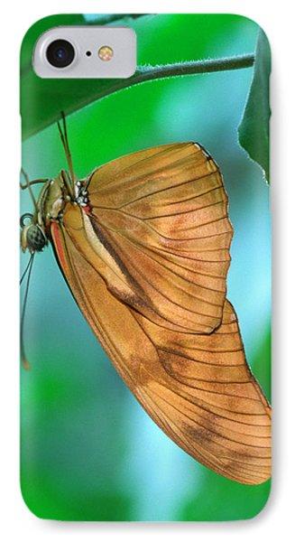 Flambeau Butterfly IPhone Case by Nigel Downer