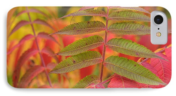 IPhone Case featuring the photograph Flamboyant Sumac by Arkady Kunysz