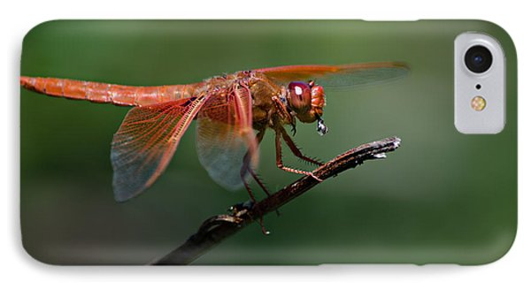 Flame Skimmer Dragonfly IPhone Case by Linda Villers