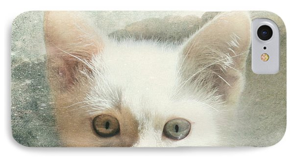 Flamepoint Siamese Kitten IPhone Case by Pam  Holdsworth