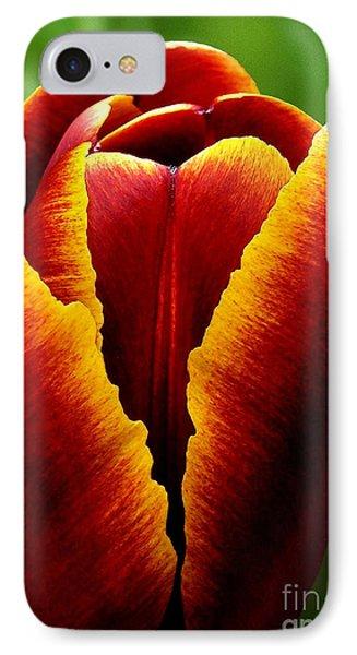 Flaming Heart Tulip IPhone Case by Kathi Mirto