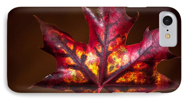 IPhone Case featuring the photograph Flaming Red  by Crystal Hoeveler