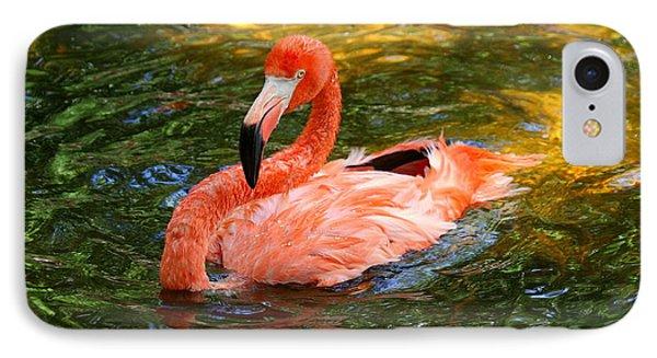 IPhone Case featuring the photograph Flamingo Bathtime by Myrna Bradshaw